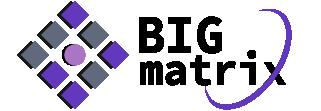 BIGMatrix